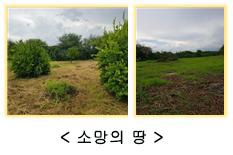 200810_05.jpg
